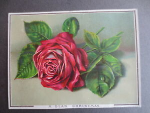 ANTIQUE Christmas Greetings Card Red Rose Victorian Chromo Litho