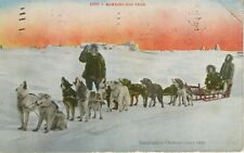 Howling Dog Team ~ Dog Sled Dog Sleigh Snow Winter P.H. Nowell ~ c1912 Postcard