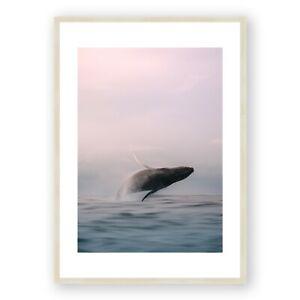 Whale Print , Whale Photography , Framed Print , Animal Print , Ocean Print