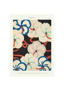 Japanese 1902 Art Pattern Print Shin-Bijutsukai Flower Blossom Print