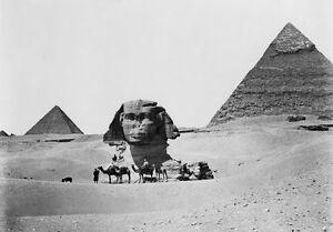 PH07 Vintage 1860-1890 Egypt Egyptian Sphinx Pyramids Cairo Photo Re-Print A3/A2