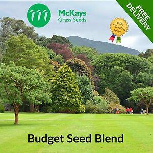 McKays Budget Grass Seed Cheap Grass Seed Bulk Grass Seed 5kg 10kg 20kg