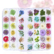3D Misto seco Flores Decoração Nail Art Adesivos Unha Flor preservado Decalques