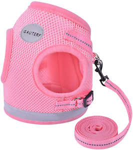 GAUTERF Cat Harness and Leash Set for Walking Escape Proof, Adjustable Soft mesh