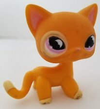 LITTLEST PET SHOP - # 855 - ORANGE / TANGERINE SHORTHAIR CAT W/ PINK EYES & BATS