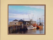 Golden Dolphin by Barbara Snyder Seascape Fishing Boats Double Matted 11x14