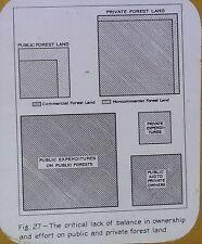 US Forest Service: Lack of Public/Private Balance, Magic Lantern Glass Slide