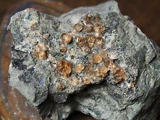 MINÉRAUX COLLECTION grenats du canada asbestos  198gr ref H53