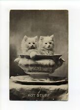 """Antique cat postcard, two kittens in a bowl, """"Hot Stuff"""""""