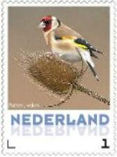 Nederland 2013 Ucollect Putter (bruin) vogel bird oisseau  postfris/mnh