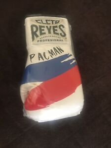 MANNY PACQUIAO CLETO REYES PHILIPPINE FLAG CUSTOM BOXING GLOVE UN SIGNED NIKE