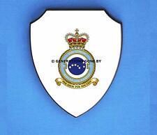 ROYAL AIR FORCE 7 SQUADRON WALL SHIELD (FULL COLOUR)