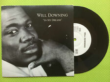 Will Downing - In My Dreams, Island Records 4th Broadway BRW-104 Ex/Ex+ Con 1988