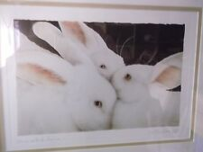 Will Bullas 'SOME SET OF BUNS' Signed Lithograph # 435 COA FRAMED Bunny Rabbits