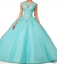 Ball Gown Quinceanera Dress Appliques Pageant Prom Sweet 15 16 Prom Party Dress