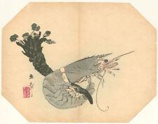 Guaranteed Genuine Original Japanese woodblock print Prawn Fan