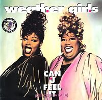 The Weather Girls 12'' Can U Feel It - Germany (EX/EX)