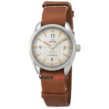 Omega Seamaster Railmaster Grey Dial Automatic Men's Watch 220.12.40.20.06.001