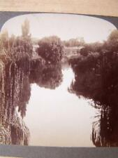 Stereo View   Zoological Gardens Adelaide  Australia.