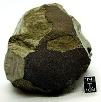 METEORITE MARTIAN SHERGOTTITE OFFICIALLY CLASSIFIED NWA 13038 MARS METEORITE