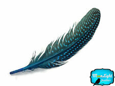 10 Pieces -TEAL BLUE Polka Dot Guinea Fowl Wing quills Feathers