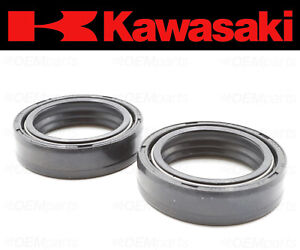 Set of (2) Kawasaki Front Fork Oil Seal (See Fitment Chart) #44009-018
