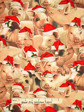 Christmas Fabric - Pigs In Santa Hats Holiday Animal Fabric Traditions 24 Inches