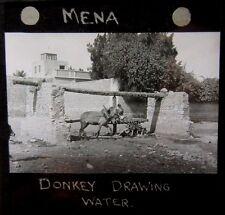 c1910 MENA ETHIOPIA Donkey Drawing Water - Glass Lantern Photo Slide