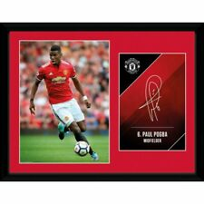 PAUL POGBA MANCHESTER UNITED FRAMED PICTURE 16' x 20' OFFICIALLY LICENSED