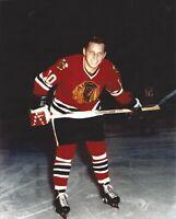 8x10 photo hockey Dennis Hull, Chicago Blackhawks