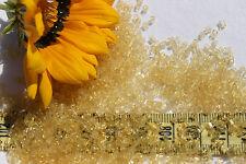 2mm Tube Old Time Vintage Venetian Italy Transparent Golden Rod Beads/1oz