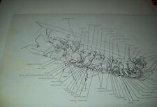 1967 Lincoln Wiring Diagram 11X17 oversized copies! Mechanics Restorers