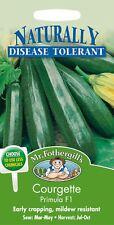 Mr Fothergills - Pictorial Packet - Vegetable - Courgette Primula F1 - 10 Seeds