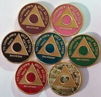 Custom Color Year 1 - 65 Gold Plated AA Medallion Sobriety Chip Coin Token