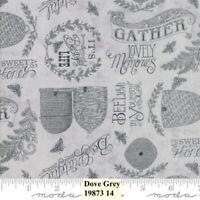 MODA BEE JOYFUL 100% cotton fabric by the yard Dove Gray Bee Hives Bees Words