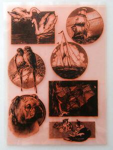 "Clear Stamps Sheet 7""x10"" ~ Antique Engravings FLONZ Vintage Rubber 403-030"