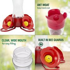clear pinch waist glass hummingbird feeder - 8 oz. capacity