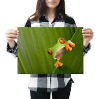 A3 - Cool Green Frog Nature Frogs Poster 42X29.7cm280gsm #3682