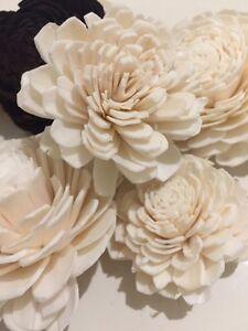 Gift Pack Solar Flower 8 Mix Sandalwood Scented Flower