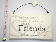 Lucky Friends Wall Plaque Sign Friendship Birthday Gift Ideas for her & Friends