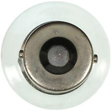 Courtesy Light Bulb Wagner Lighting BP1141LL