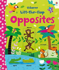 Lift-the-flap Opposites by Felicity Brooks (Board Book, 2015)