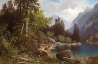 Oil painting wild animal wildlife deer by lake & mountains landscape on canvas