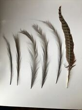 Antique Victorian Millinery Plume Single Feathers Black Assorted Sizes
