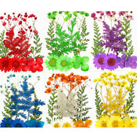 Pressed Dried Flower Candle Filling Epoxy Resin Mold Jewelry Making Craft DIY