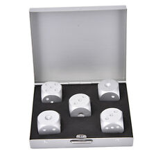 Silver Square Aluminium Alloy Poker Solid Dominoes Dice Game Portable Dice New~!