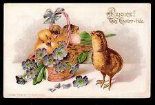 1906 Robbins chicks in Primrose Basket Easter postcard
