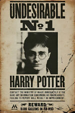 """Harry Potter - Movie Poster / Print (Wanted: Undesirable No. 1) (Size: 24 X 36"""")"""