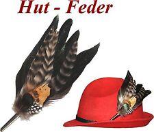 NEU Hutfeder Hut  Federn Hutschmuck mit Metallhülse Damenhut Schützenhut