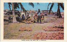 Vintage Postcard - Sponge Auction in Key West, FL - Unused - VG